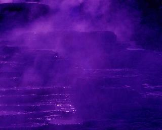 Waters/Purple Mist